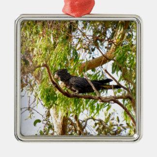 BLACK COCKATOO RURAL QUEENSLAND AUSTRALIA Silver-Colored SQUARE DECORATION