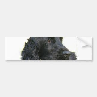 Black Cocker Spaniel Dog Bumper Sticker