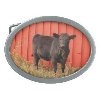 Black Cow Red Barn Belt Buckle