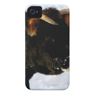 Black Cow with horns Case-Mate iPhone 4 Case