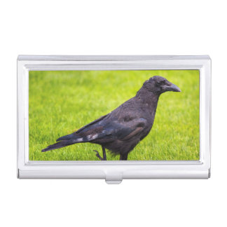 Black crow business card holder