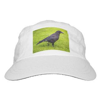 Black crow hat