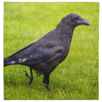 Black crow napkin