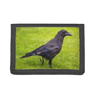 Black crow trifold wallets