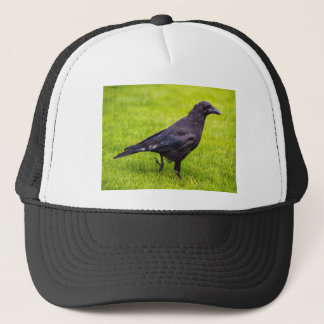 Black crow trucker hat