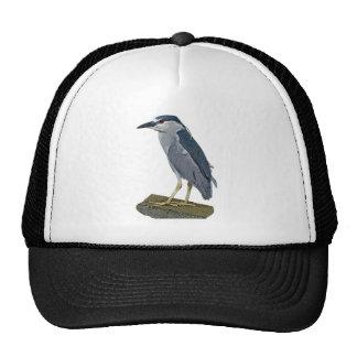 Black-crowned Night Heron Trucker Hats