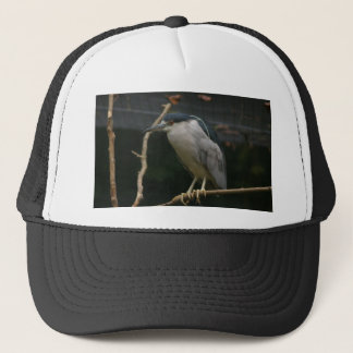 Black-crowned Night Heron Trucker Hat