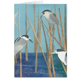 Black-Crowned Night Herons Card