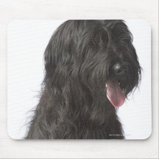 Black dog, Briard Mouse Pad