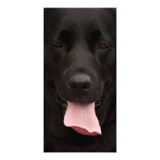 Black dog face photo card