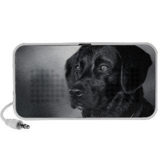 black dog iPhone speakers