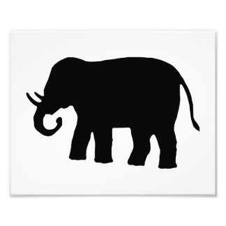 Black Elephant Photo Print