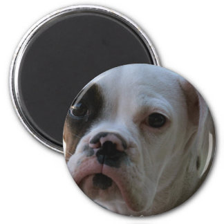 Black Eyed Boxer Dog Round Magnet
