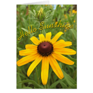 Black-eyed Susan and Bud Photograph Card