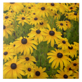 Black Eyed Susan Garden Ceramic Tile
