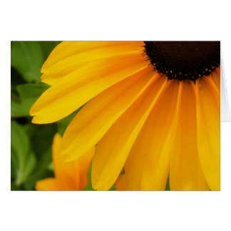 Black Eyed Susan Note Card