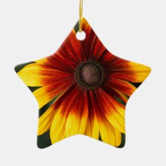 Black-eyed-Susan (Rudbeckia hirta) Ceramic Ornament