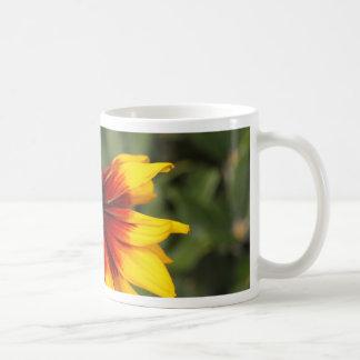 Black-eyed-Susan (Rudbeckia hirta) Coffee Mug