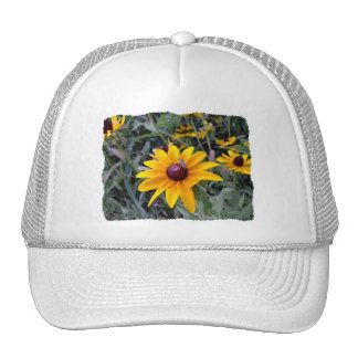 Black-Eyed Susan Solid White Hat