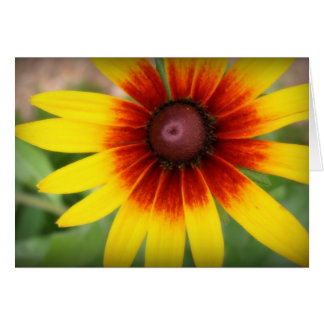 Black-eyed susan - Thank you! Card