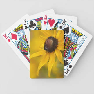 Black-Eyed Susan with a Teardrop Bicycle Playing Cards