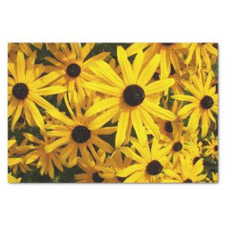Black Eyed Susans Floral Tissue Paper