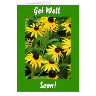Black Eyed Susans, Get Well, Soon! Card