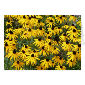 Black-Eyed Susans Note Cards