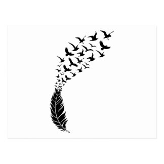 Black feather with flying birds postcard