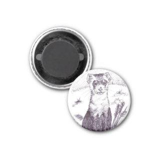 Black Footed Ferret - Magnet