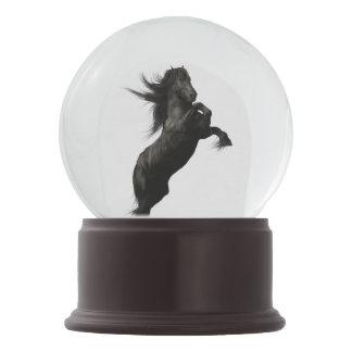 Black Friesian Horse Snow Globe Snow Globes