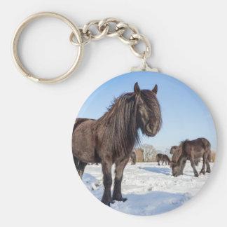Black frisian horses in winter snow basic round button key ring