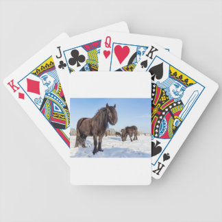 Black frisian horses in winter snow bicycle playing cards