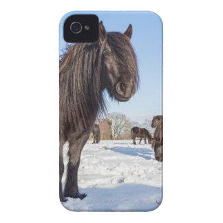 Black frisian horses in winter snow iPhone 4 cases