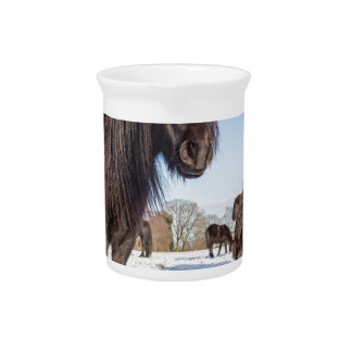Black frisian horses in winter snow pitcher