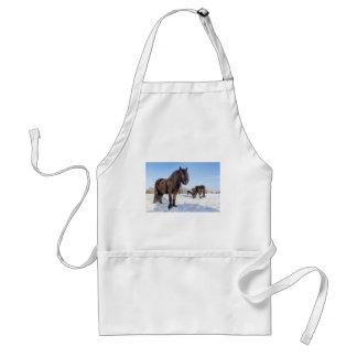 Black frisian horses in winter snow standard apron