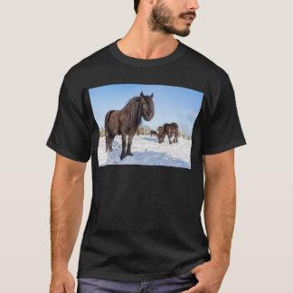 Black frisian horses in winter snow T-Shirt
