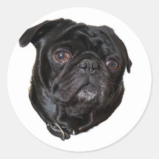Black Funny Pug Classic Round Sticker