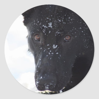 Black German Shepherd Classic Round Sticker