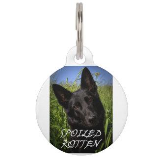 black german shepherd spoiled rotten pet tag