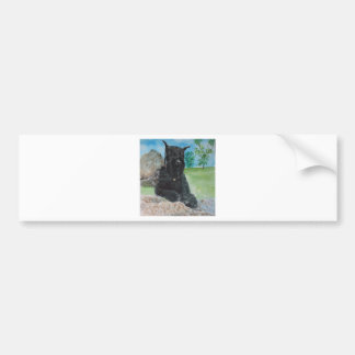 Black Giant Schnauzer Bumper Sticker