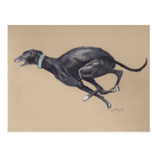 Black Greyhound Running Dog Art Postcard