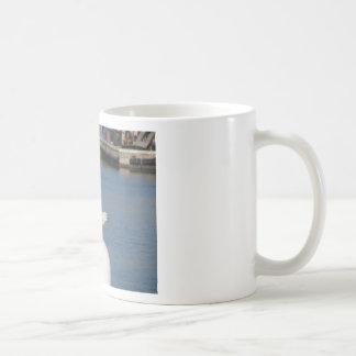 Black-headed gull perched on post calling coffee mug