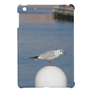 Black-headed gull perched on post calling cover for the iPad mini