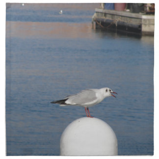 Black-headed gull perched on post calling napkin