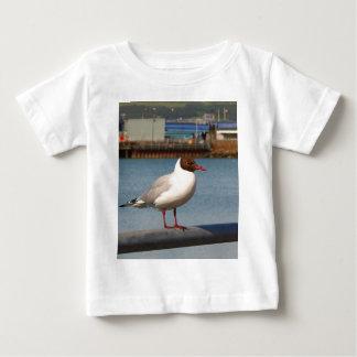 Black-headed gull, Scotland Baby T-Shirt