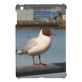 Black-headed gull, Scotland Cover For The iPad Mini