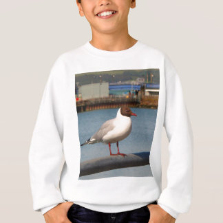 Black-headed gull, Scotland Sweatshirt
