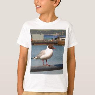 Black-headed gull, Scotland T-Shirt