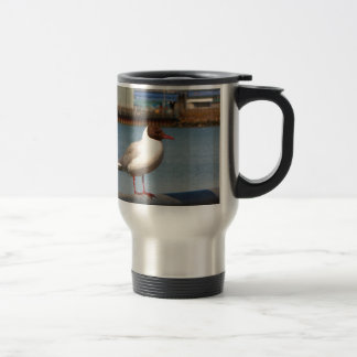 Black-headed gull, Scotland Travel Mug